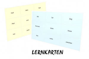 Lernkarten 'Das große 1x1'