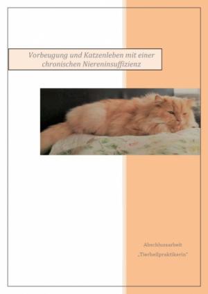 Vorbeugung und Katzenleben mit einer chr. Niereninsuffizienz