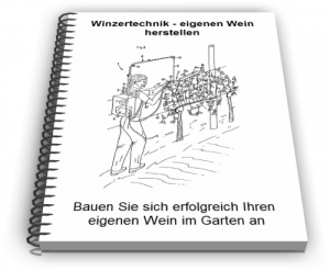 Winzer Weinherstellung Technik zum Wein herstellen