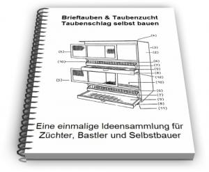 Brieftauben Taubenzucht Taubenschlag Technik und Design