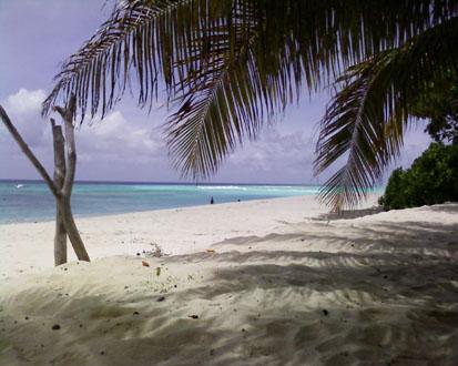 Die Fidschi Inseln