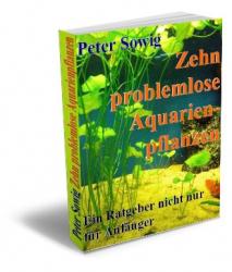 Zehn problemlose Aquarienpflanzen