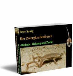 Der Zwergkrallenfrosch (Hymenochirus boettgeri)