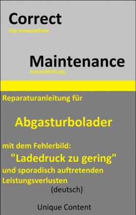 Reparaturanleitung für Abgasturbolader