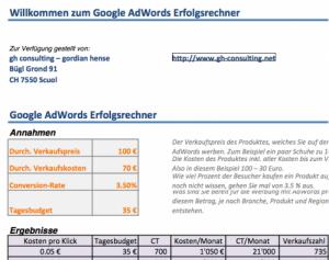 Google AdWords Erfolgsrechner