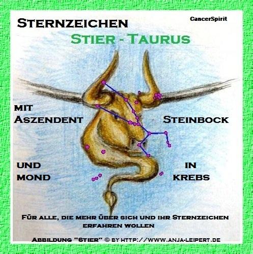 Stier Aszendent Steinbock