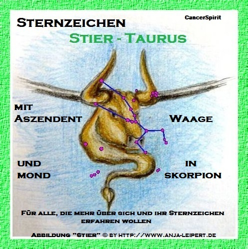 Sternzeichen Stier / AC Waage / Skorpion-Mond - eBook by