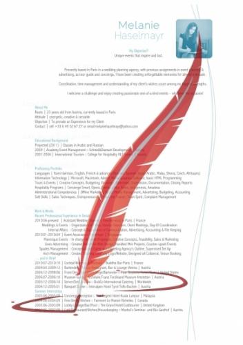 CV Resume Template Lebenslauf 'Compact Structure'