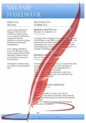 CV Resume Lebenslauf Template 'Management Experience'