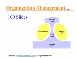 Organisations Management