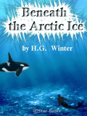 Beneath the Artic Ice