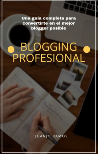 Blogging profesional