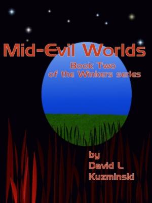 Mid-Evil Worlds