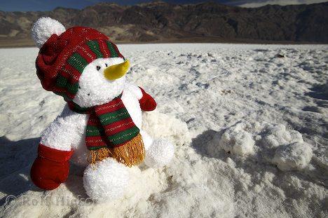 Der ungewöhnliche Schneemann
