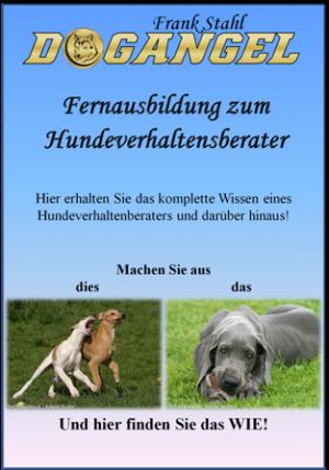 Fernausbildung zum Hundeverhaltensberater
