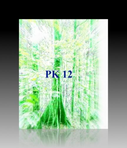 PK 12