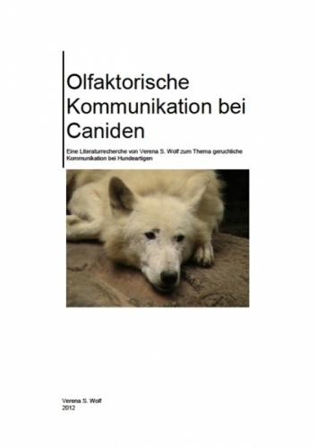 Olfaktorische Kommunikation bei Caniden