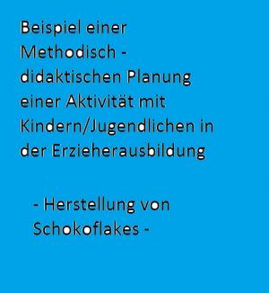 Bsp. Methodisch - didaktische Planung Erzieherausbildung III