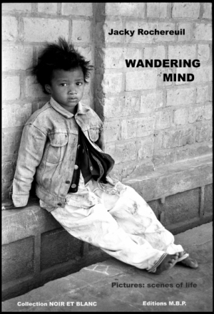 Wandering Mind