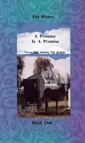 A Promise Is A Promise- book 1