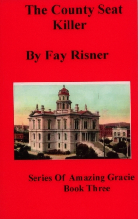 The County Seat Killer - book 3
