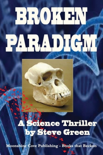 Broken Paradigm