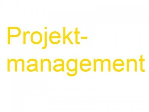 Projektmanagement-Vorlage - Projektfunktionendiagramm