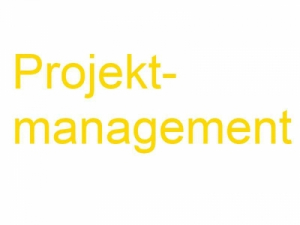 Projektmanagement-Vorlage - Projektorganisation
