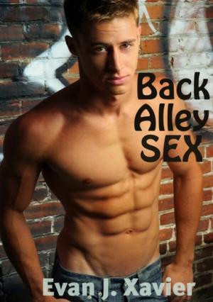 Back Alley Sex