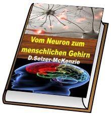 Vom Neuron zum menschlichen Gehirn