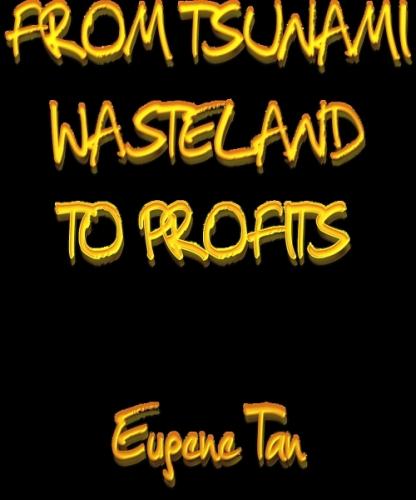 FROM TSUNAMI WASTELAND TO PROFITS
