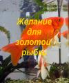 Желание для золотой рыбки