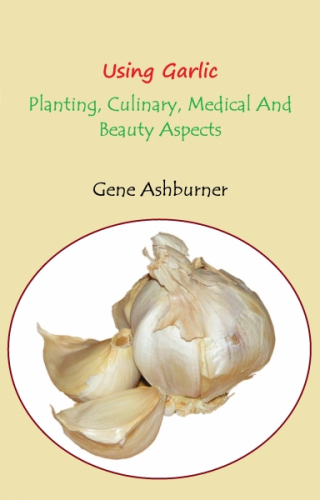 Using Garlic – Planting, Culinary, Medical And Beauty Aspect