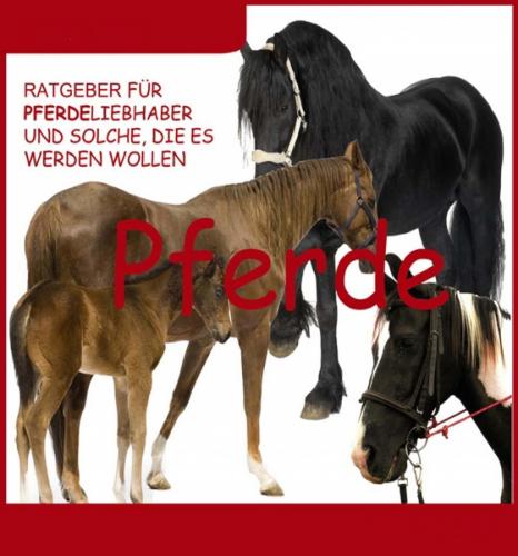 Ratgeber für Pferdeliebhaber