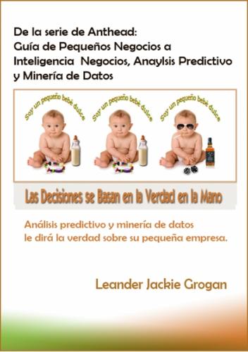Guía de Pequeños Negocios a Inteligencia Negocios, Anaylsis