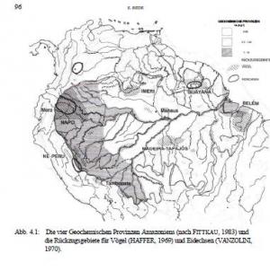 Die amazonischen Regenwälder als Labor der Evolution