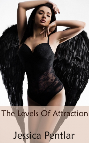 The Levels Of Attraction