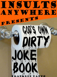Insults Anywhere Presents God's Own Dirty Joke Book