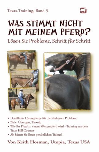 Was stimmt nicht mit meinem Pferd?