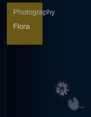 Photography : Flora