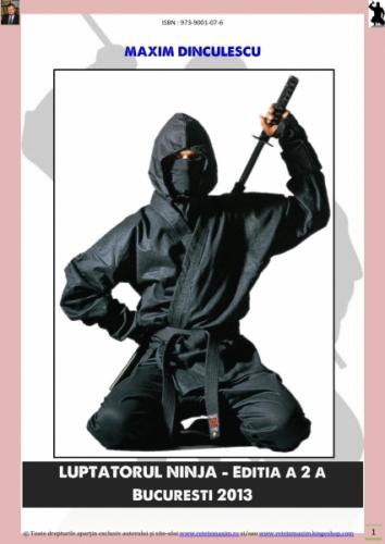 Luptatorul Ninja