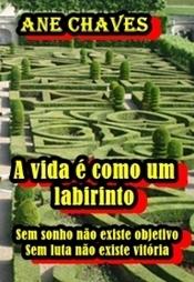 A vida é como um labirinto