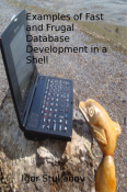 Examples of Fast and Frugal Database Development in a Shell