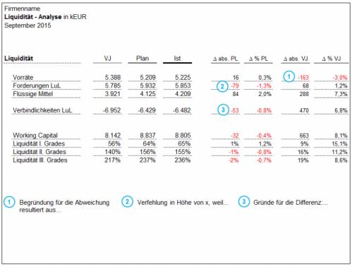 Liquiditätsanalyse