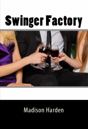 Swinger Factory