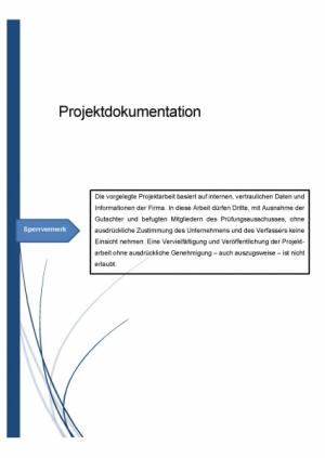 Projektarbeit - Operative Professional - IT Business Manager