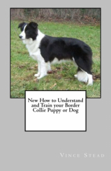 How to Understand and Train your Border Collie Puppy or Dog