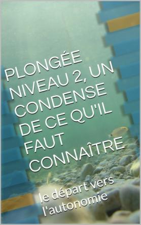 PLONGÉE NIVEAU 2, UN CONDENSE DE CE QU'IL FAUT CONNAÎTRE