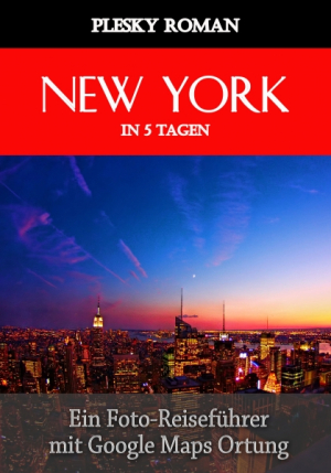 New York in 5 Tagen