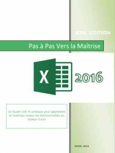 Excel 2016 Pas à pas vers la maîtrise